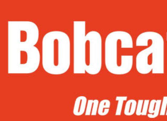 Bobcat one tough animal